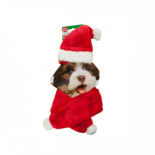 Holiday Pet Santa Hat and SCARF Set